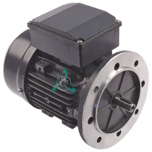 Мотор MYT 712-4  (450Вт / 230В) для картофелечистки Fimar PPF5 (код SL1470)